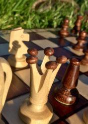 Культурный отдых на природе - настольные игры, шахматы, бильярд